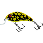 Salmo-Rattlin-Hornet-Shallow-Floating-35-cm-3-g